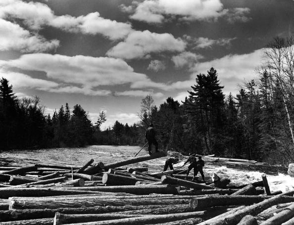 Lumber Industry「Logging In Maine」:写真・画像(17)[壁紙.com]