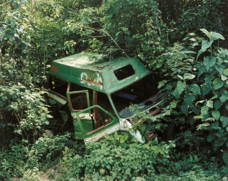 Lost「Abandoned van overgrown by weeds and trees」:スマホ壁紙(8)