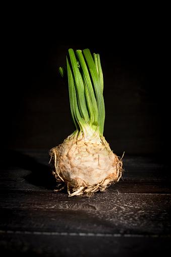 Celery「Celeriac on dark wood」:スマホ壁紙(1)