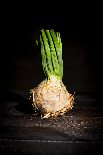 Crocus「Celeriac on dark wood」:スマホ壁紙(9)