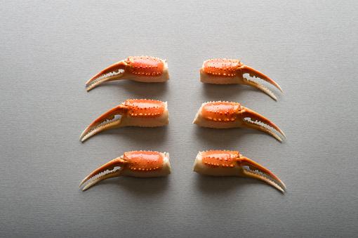 Spider Crab「Snow Crab Claws」:スマホ壁紙(5)