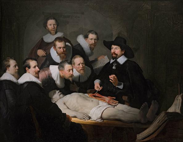 Netherlands「Anatomy lesson of Dr.  Egbertsz Sebastian」:写真・画像(6)[壁紙.com]