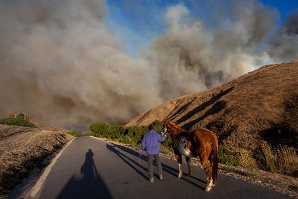 """風「""""Extreme"""" Santa Ana Winds Spark New Wildfires In Southern California」:写真・画像(12)[壁紙.com]"""