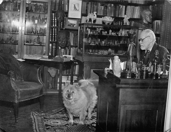 Dresser「Sigmung Freud, Austrian psychoanalyst, in his bureau in the Berggasse 19. Austria. Photograph. Around 1935.」:写真・画像(0)[壁紙.com]