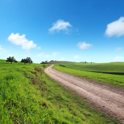 Dirt Road「countryside」:スマホ壁紙(15)