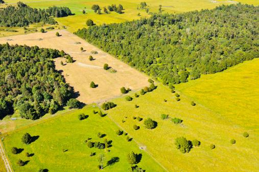 Westland - South Island New Zealand「Countryside」:スマホ壁紙(2)