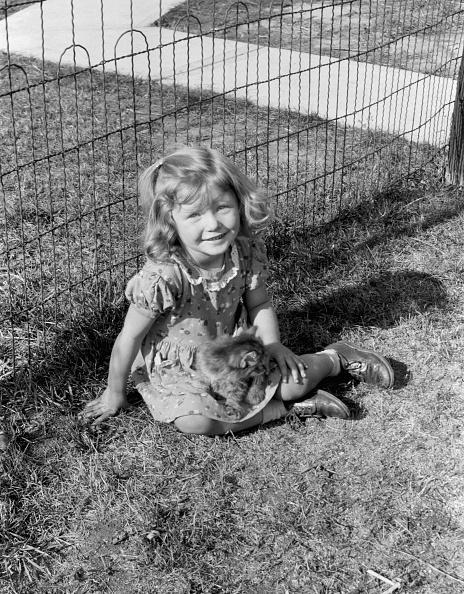 子猫「Young Girl With Kitten」:写真・画像(11)[壁紙.com]