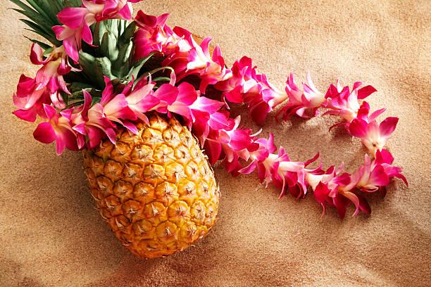 lei on pineapple at the beach:スマホ壁紙(壁紙.com)