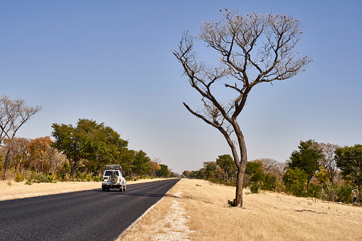 Caprivi Strip「Car moving on road against clear sky at Caprivi strip, Namibia」:スマホ壁紙(7)