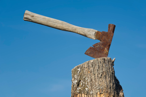Pennsylvania「Ax Stuck into Stump Chopping Block」:スマホ壁紙(13)