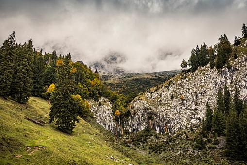 Kaiser Mountains「Hiking trail before cloud-covered mountains, Kitzbuehel, Kaiser mountains, Tyrol, Austria」:スマホ壁紙(14)
