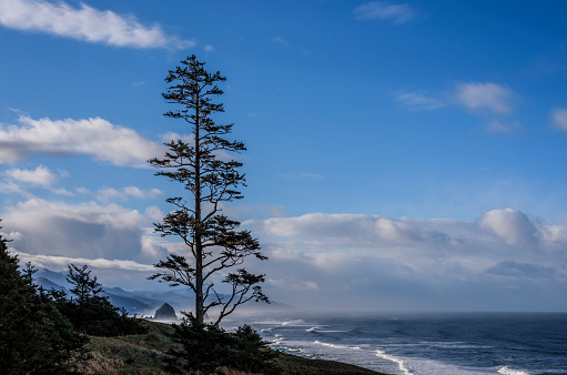 Wave「Haystack Rock can be seen to the South of Ecola State Park」:スマホ壁紙(14)
