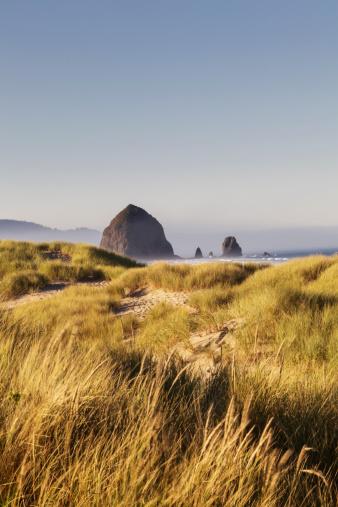 Cannon Beach「Haystack Rock seen from dunes」:スマホ壁紙(5)