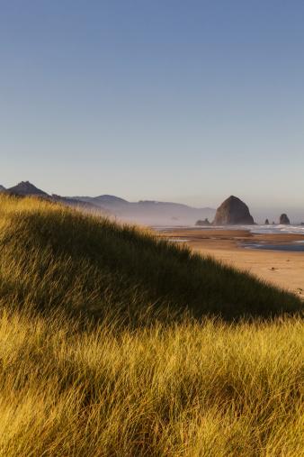 Cannon Beach「Haystack Rock seen from dunes」:スマホ壁紙(10)