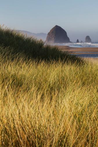 Cannon Beach「Haystack Rock seen from dunes」:スマホ壁紙(3)