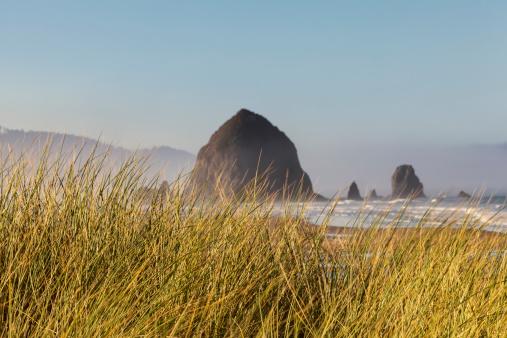 Cannon Beach「Haystack Rock seen from dunes」:スマホ壁紙(8)