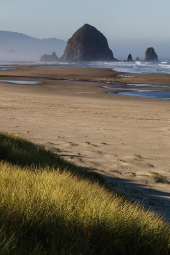 Cannon Beach「Haystack Rock seen from dunes」:スマホ壁紙(4)
