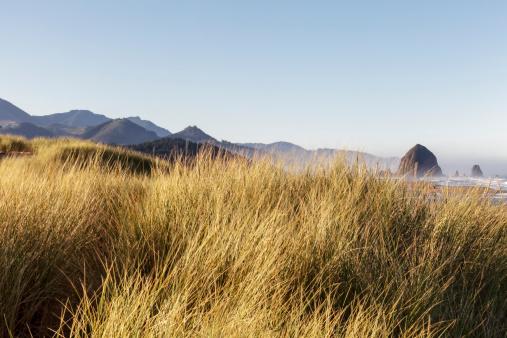 Cannon Beach「Haystack Rock seen from dunes」:スマホ壁紙(12)