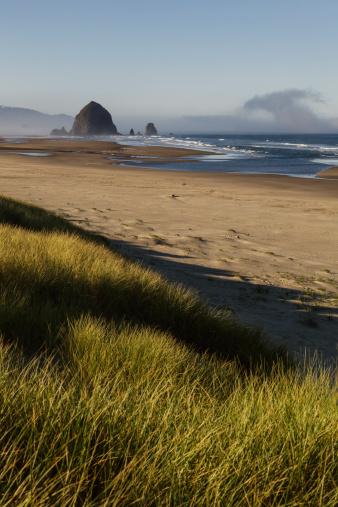 Cannon Beach「Haystack Rock seen from dunes」:スマホ壁紙(0)