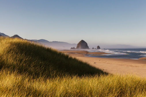 Cannon Beach「Haystack Rock seen from dunes」:スマホ壁紙(15)