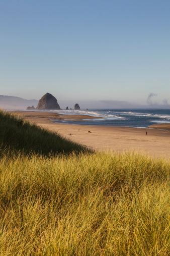 Cannon Beach「Haystack Rock seen from dunes」:スマホ壁紙(9)