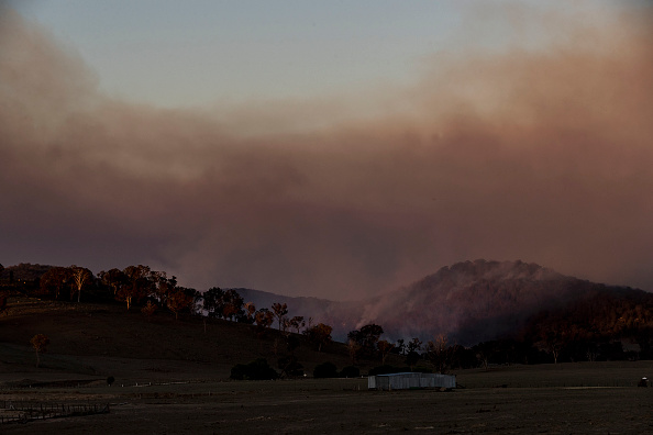 New South Wales「At Least Three Dead And Hundreds Of Homes Destroyed As Bushfires Burn Across Northern NSW」:写真・画像(12)[壁紙.com]