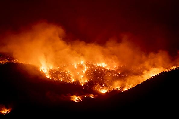 オーストラリア「State Of Emergency Declared In ACT As Canberra Braces For Increased Bushfire Threat」:写真・画像(11)[壁紙.com]
