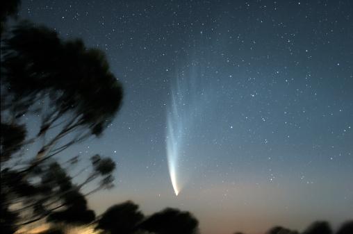 Single Tree「January 24, 2007 - Comet McNaught P1 viewed from Mount Macedon, Victoria, Australia.」:スマホ壁紙(12)