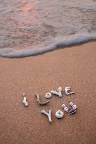 貝殻「shells spelling ' i love you' in sand」:スマホ壁紙(19)