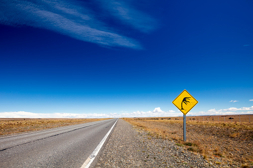 Infamous「Road sign indicating the infamous strong winds in Patagonia, Argentina, 2018」:スマホ壁紙(2)