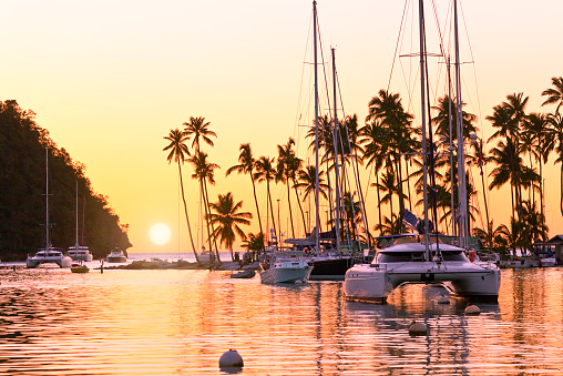 Catamaran「St. Lucia, Marigot bay at sunset」:スマホ壁紙(8)