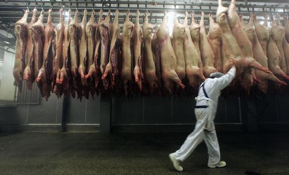 肉「Meat Production In Germany」:写真・画像(5)[壁紙.com]