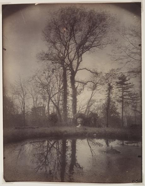 Single Tree「The Park At Sceaux [April 1925」:写真・画像(14)[壁紙.com]