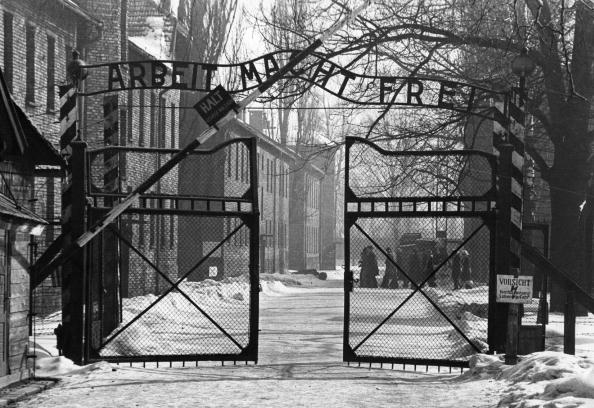 Entrance「Gates Of Auschwitz」:写真・画像(10)[壁紙.com]