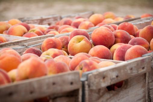 Peach「Close-Up of Peach Crates」:スマホ壁紙(14)