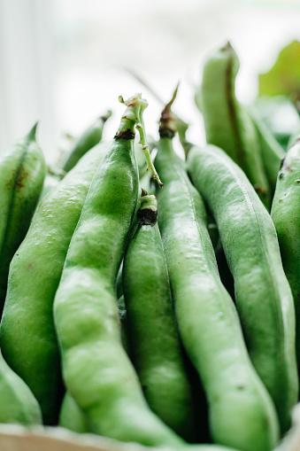 Bush Bean「Closeup of Green Beans」:スマホ壁紙(8)