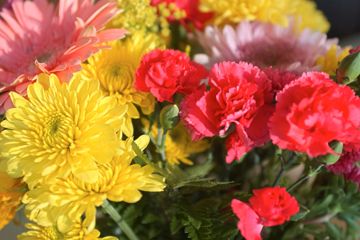 カーネーション「Close-up of carnations and mums in a bouquet of flowers.」:スマホ壁紙(0)