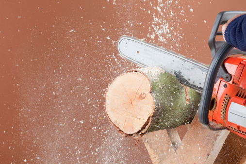 Log「Closeup Of Chainsawing A Log」:スマホ壁紙(2)