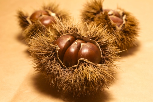 chestnut「Close-up of fresh chestnuts on a table」:スマホ壁紙(3)