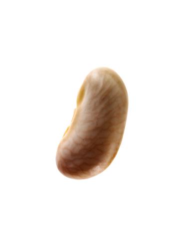 Bean「Close-up of white bean seed, studio shot」:スマホ壁紙(18)