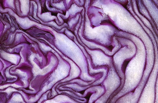 Red Cabbage「Close-up of red cabbage」:スマホ壁紙(14)