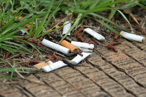 Cigarette「Close-up of cigarette butts lying on a grass lined walkway」:スマホ壁紙(18)