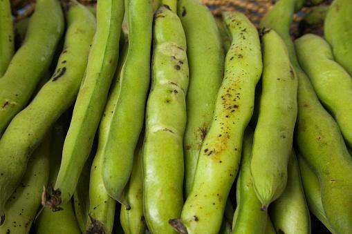 Bush Bean「Close-up of freshly picked green string beans (Pha」:スマホ壁紙(11)