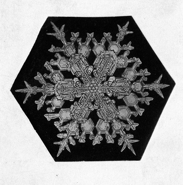 結晶「Close-up Of A Snowflake」:写真・画像(7)[壁紙.com]