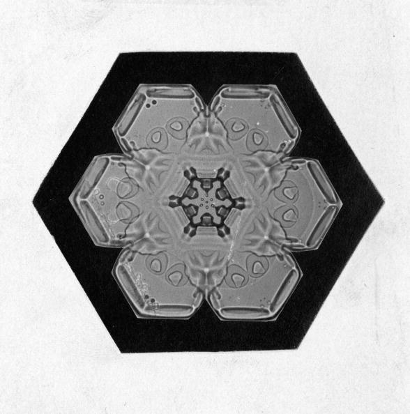 雪の結晶「Close-up Of A Snowflake」:写真・画像(2)[壁紙.com]