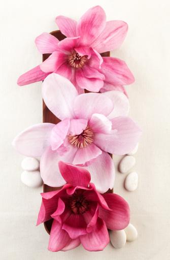 Magnolia「Closeup of red magnolia flowers on wooden bowl.」:スマホ壁紙(13)