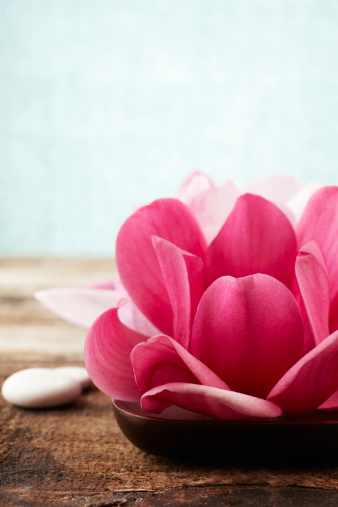 Magnolia「Closeup of red magnolia flowers on wooden bowl」:スマホ壁紙(11)
