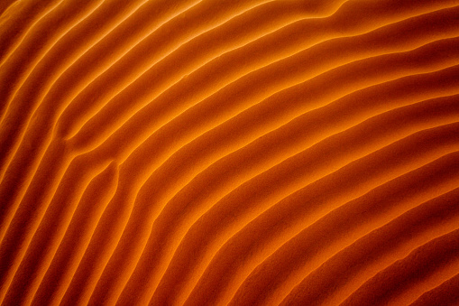Persian Gulf Countries「Close-up of ripples in the sand, Riyadh, Saudi Arabia」:スマホ壁紙(2)