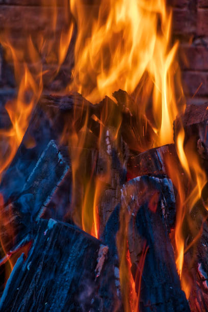 Closeup of a campfire:スマホ壁紙(壁紙.com)