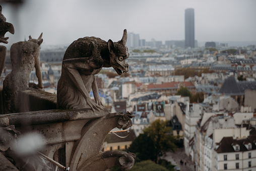 Cathedral「Close-up of gargoyles on Notre Dame Cathedral, Paris, France」:スマホ壁紙(2)